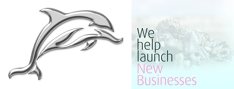 We help launch new businesses